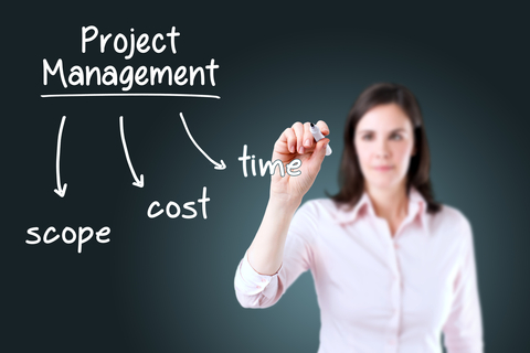 What is the role of the project manager?