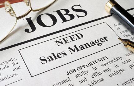 Best Job Interview  Sales Management Resume