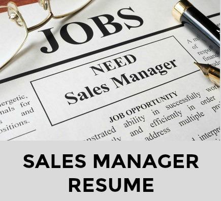 sample sales management resume