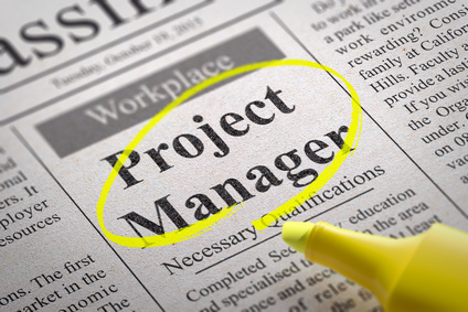 the - Resume Samples For Project Managers