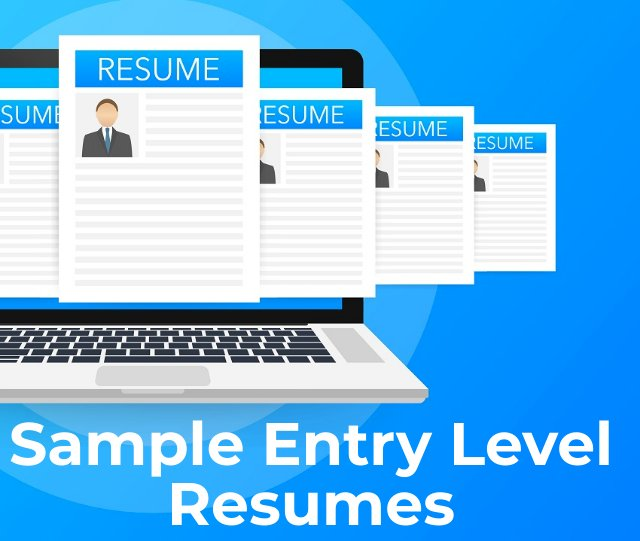 Entry Level Resume Templates